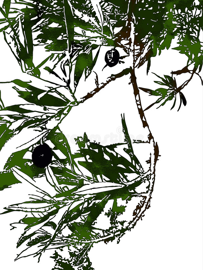 ścinku oliwki ścieżka ilustracja wektor
