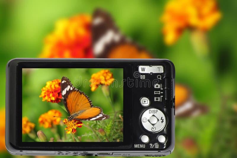 Ścisła cyfrowa kamera zdjęcie stock