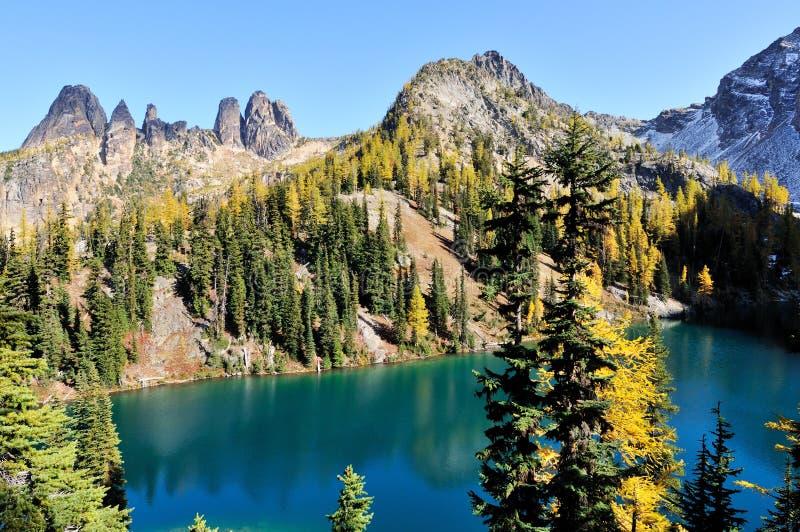śladów błękitny złoci jeziorni modrzewiowi drzewa obrazy stock