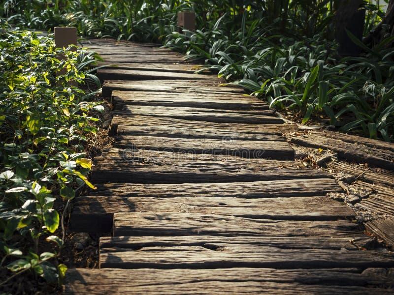 Ślad ścieżki Szlakowy Drewniany sposób zdjęcie royalty free