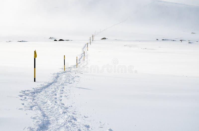 Ślad w śniegu fotografia stock