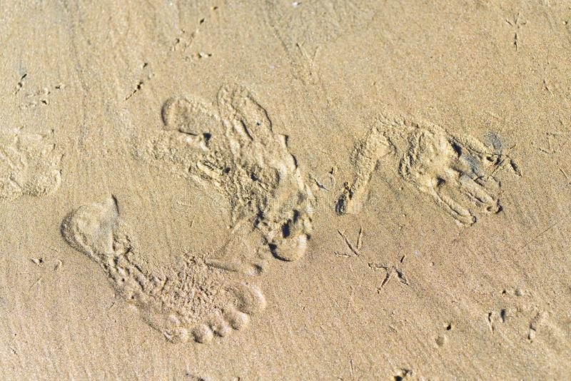 Ślada i druki w suchym piasku zwierzętami i istotami ludzkimi fotografia stock