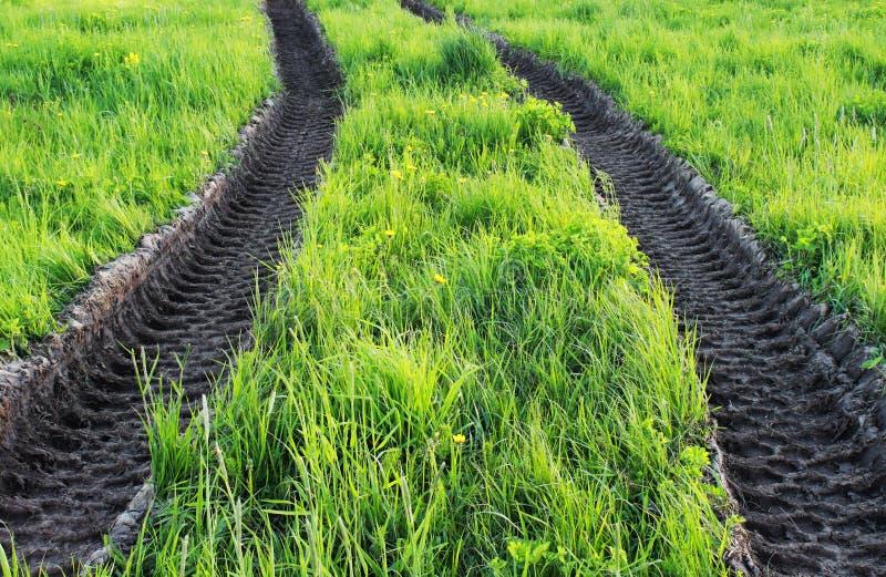 ślada maszyny ciężkie ciągnik w piasku na lato luksusowej zielonej trawie zdjęcia stock