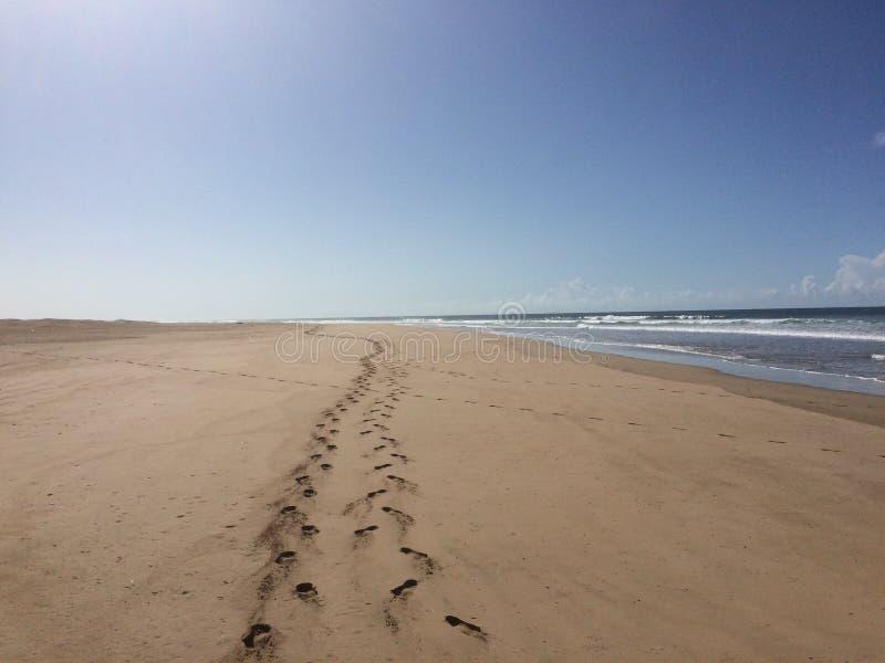 Ślada na plaży Maroc przy atlantyckim zdjęcia stock