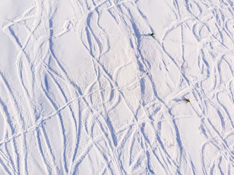 Ślada w zima śniegu od zjazdowych nart i snowboards w lasowym pojęcia freeride obrazy stock