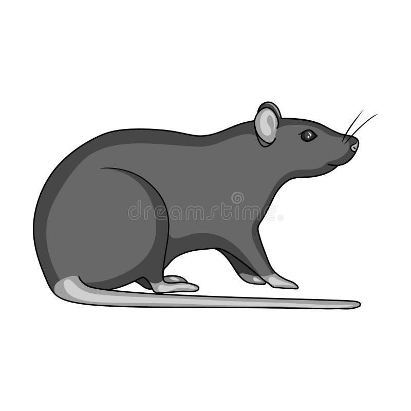 Ślepuszonka szczura pojedyncza ikona w monochromu stylu dla projekta Zarazy Kontrolnej usługa symbolu zapasu ilustraci wektorowa  ilustracja wektor