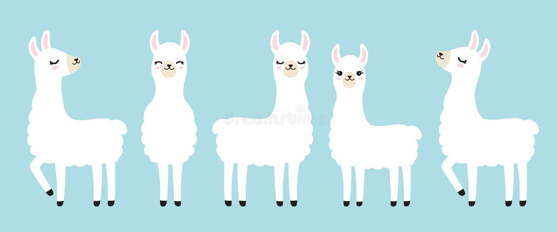 Śliczna Biała lama wektoru ilustracja ilustracji