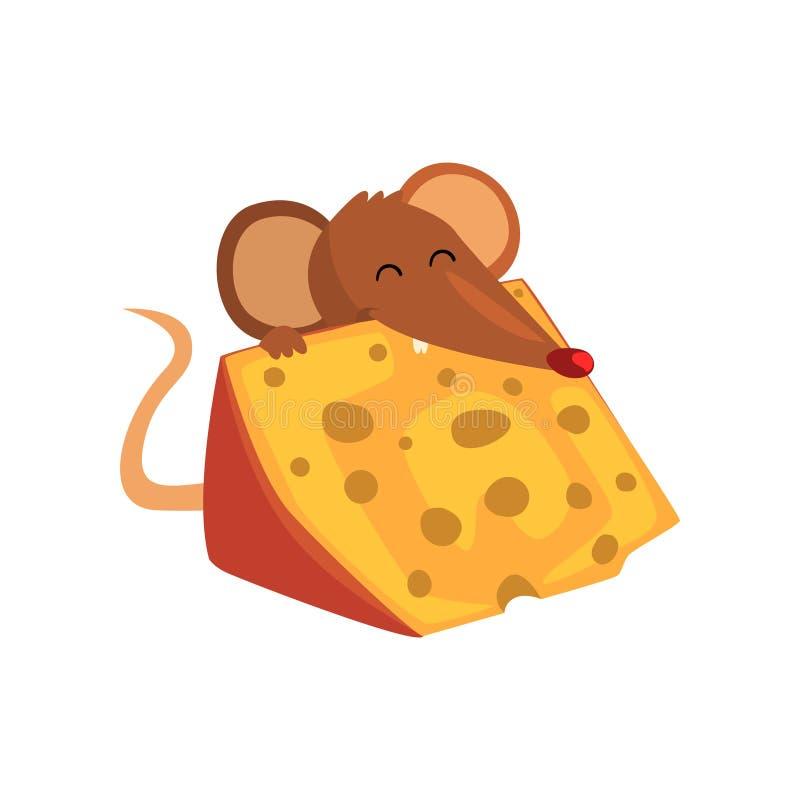 Śliczna brown mysz je dużego kawałek ser, śmiesznej ślepuszonka charakteru kreskówki wektorowa ilustracja na białym tle royalty ilustracja