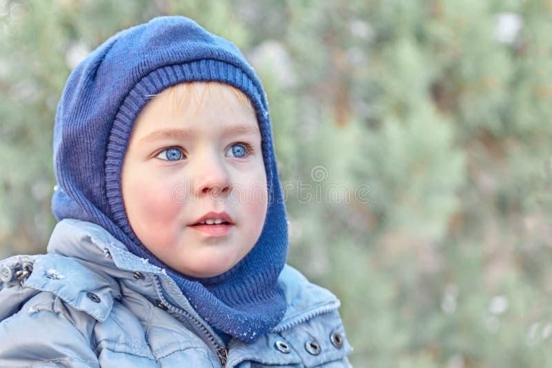 Śliczna caucasian liittle chłopiec z dużymi jaskrawymi niebieskimi oczami w zima odzieżowym i kapeluszowym kapiszonie na zielonym obraz stock