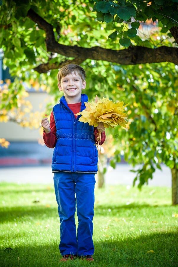 Śliczna chłopiec bawić się w jesieni na natura spacerze Chłopiec trzyma wiązkę liście klonowi w parku Jesień, dzieciństwo i ludzi obraz royalty free