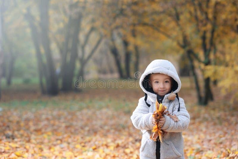 Śliczna chłopiec bawić się z liśćmi w jesień parku obraz royalty free