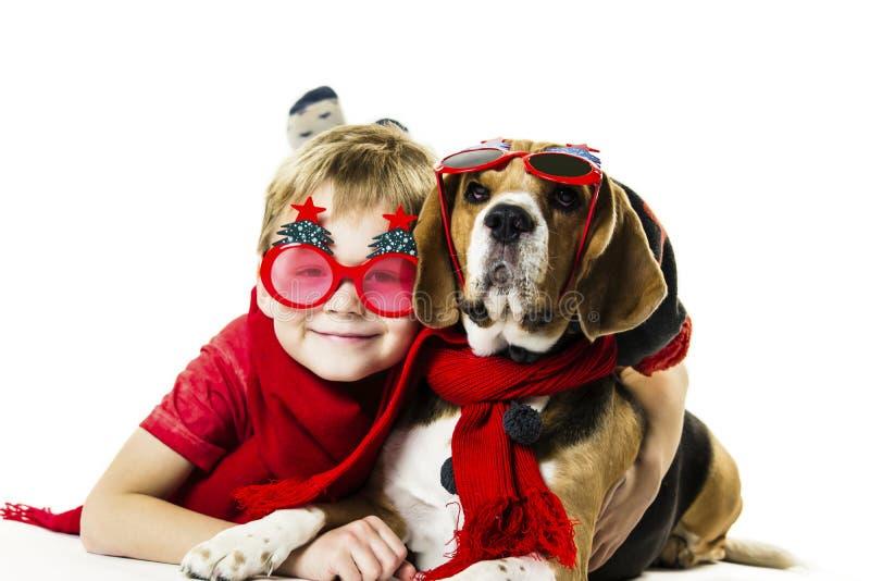 Śliczna chłopiec i śmieszny beagle pies w świątecznych okularach przeciwsłonecznych obraz royalty free