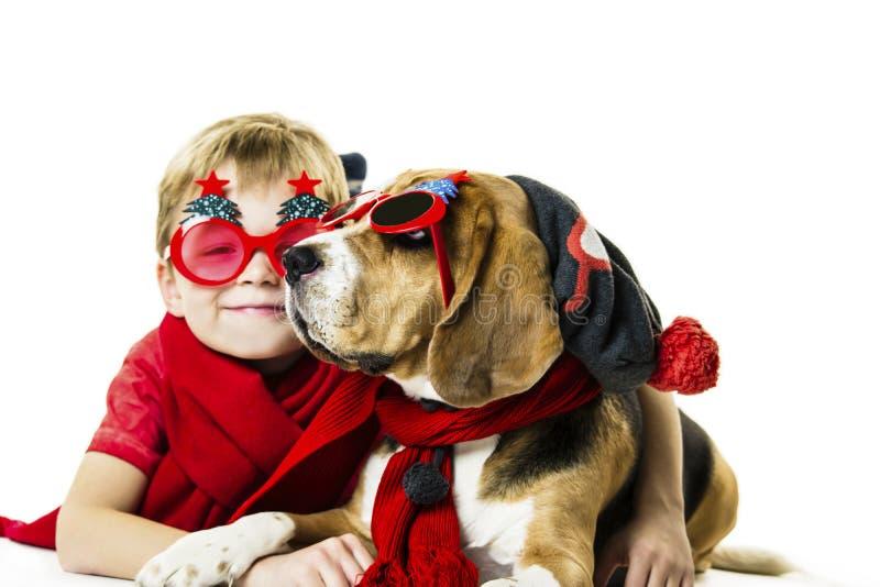 Śliczna chłopiec i śmieszny beagle pies w świątecznych okularach przeciwsłonecznych fotografia stock
