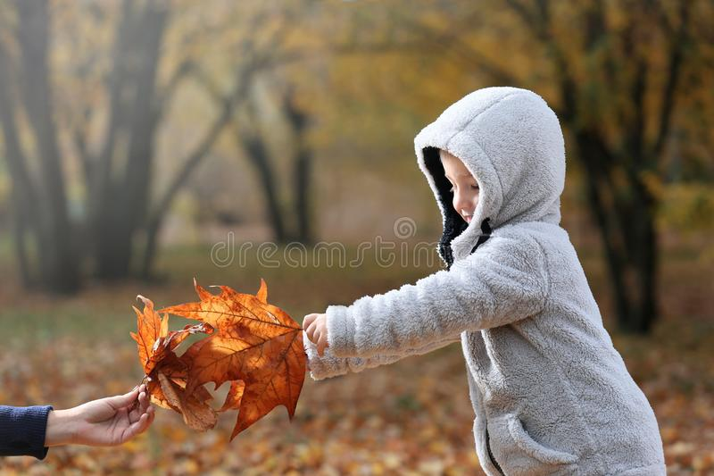 Śliczna chłopiec i jego matka bawić się z liśćmi w jesień parku obraz stock