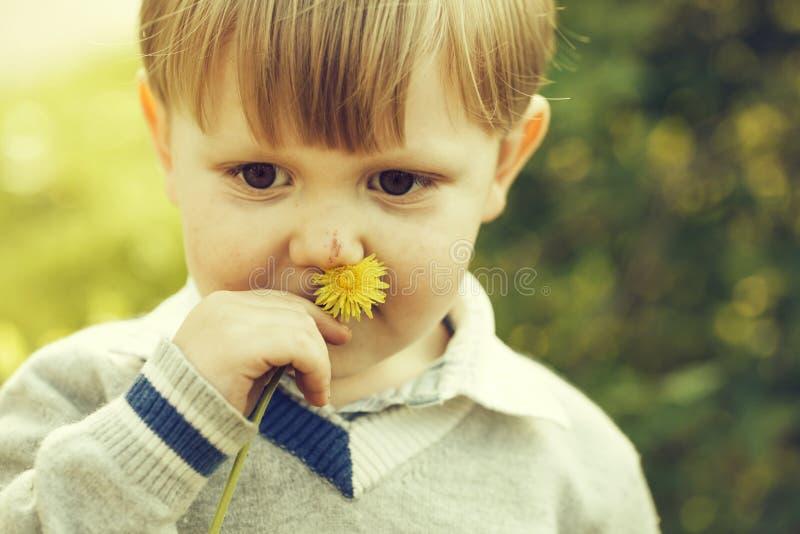 Śliczna chłopiec obwąchuje przy kwiatem fotografia stock