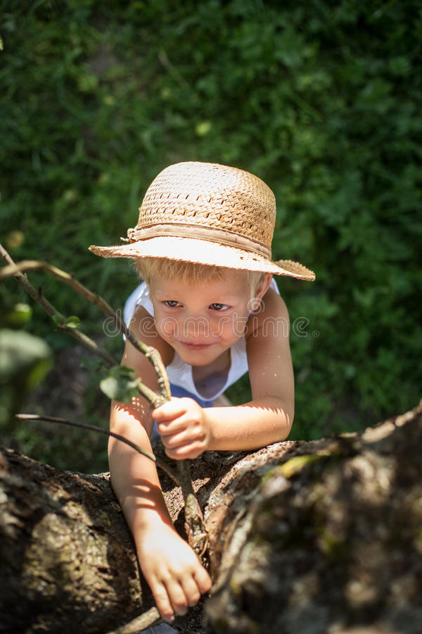 Śliczna chłopiec próbuje wspinaczkę na drzewie z słomianym kapeluszem obraz stock