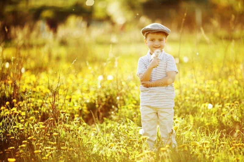 Download Śliczna Chłopiec Z Dandelions Zdjęcie Stock - Obraz złożonej z łąka, blondyny: 28950916