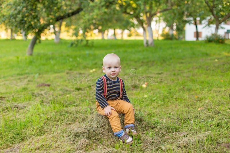 Śliczna chłopiec z dużymi niebieskimi oczami w parku fotografia stock