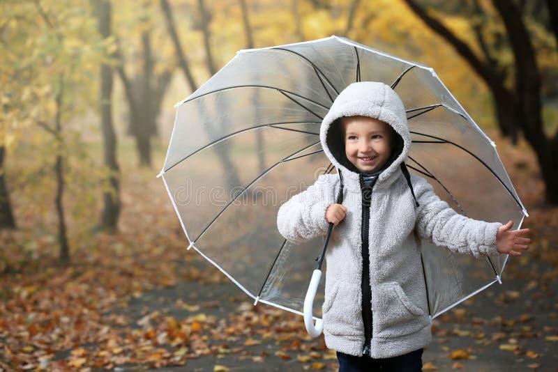 Śliczna chłopiec z przejrzystym parasolem w jesień parku obraz royalty free