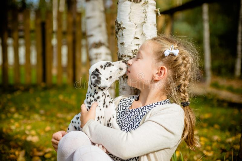 Śliczna dziewczyna całuje jej szczeniaka, doggy na drewnianym płotowym tle Szczęśliwa dziewczyna z psim oblizaniem jej twarz przy obrazy royalty free