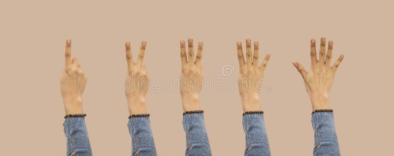 Śliczna dziewczyna pokazuje jeden, pięć palców liczy znaki odizolowywających na tle z ścinek ścieżką zawierać Komunikacyjni gesty obrazy stock