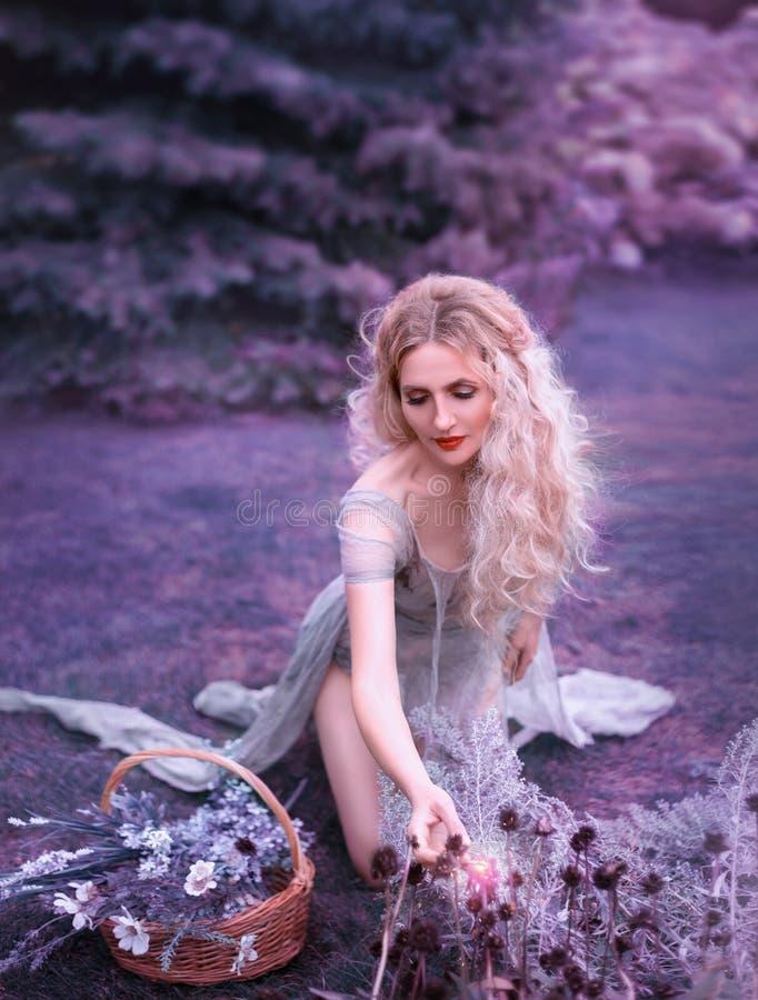 Śliczna dziewczyna siedzi na kolanach i zbiera dzikich kwiaty w starych szarość ubiera z długim cięcie pociągiem i otwiera nogi,  zdjęcia royalty free