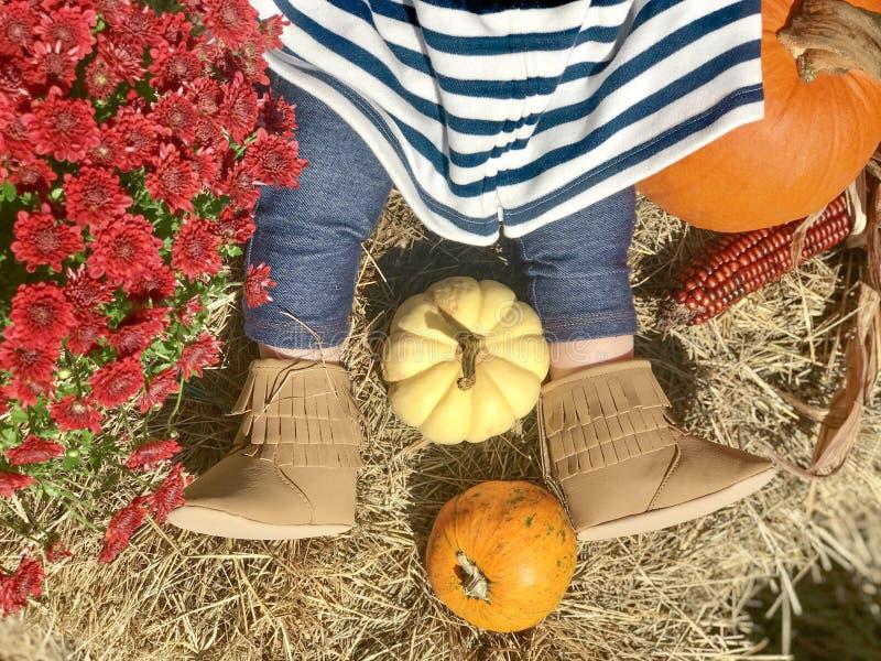 Śliczna dziewczynka w butach z baniami w sianie podczas spadek jesieni święto dziękczynienia zdjęcie royalty free