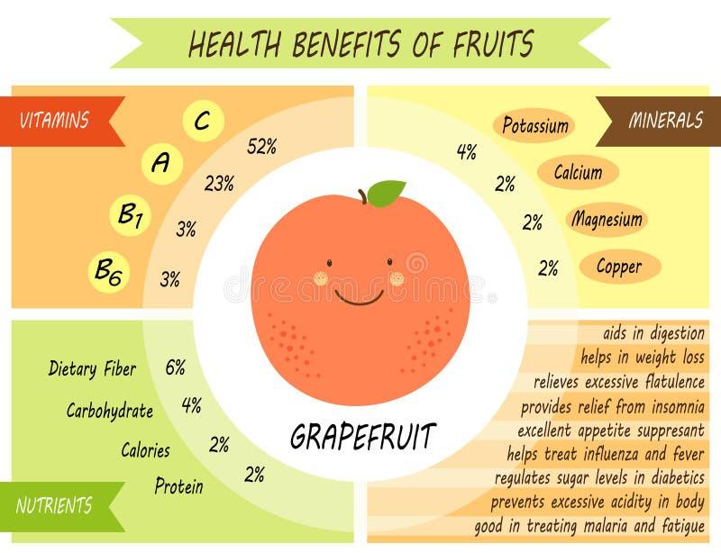 Śliczna infographic strona świadczenia zdrowotne owoc royalty ilustracja