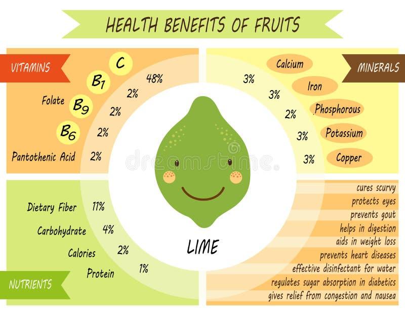 Śliczna infographic strona świadczenia zdrowotne owoc ilustracji