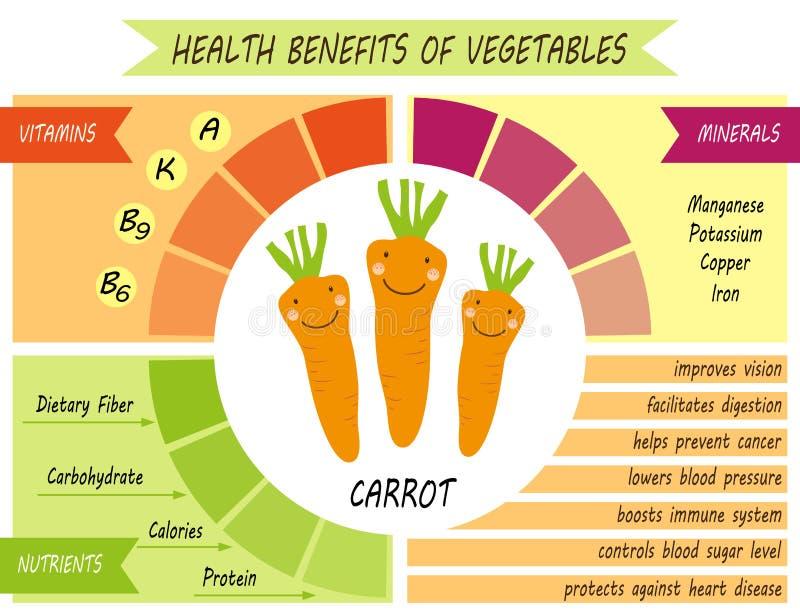 Śliczna infographic strona świadczenia zdrowotne warzywa ilustracji