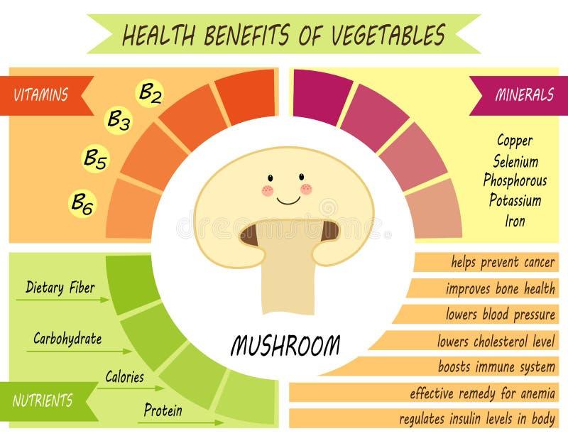Śliczna infographic strona świadczenia zdrowotne warzywa royalty ilustracja