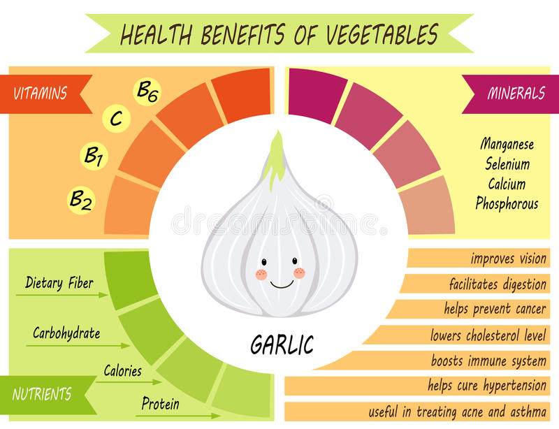 Śliczna infographic strona świadczenia zdrowotne warzywa ilustracja wektor
