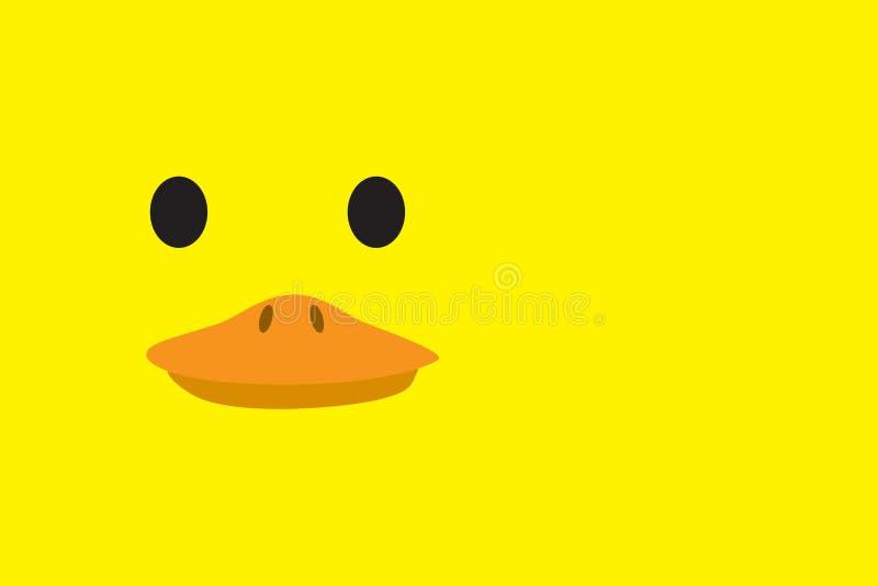 Śliczna kaczki głowa zdjęcie royalty free