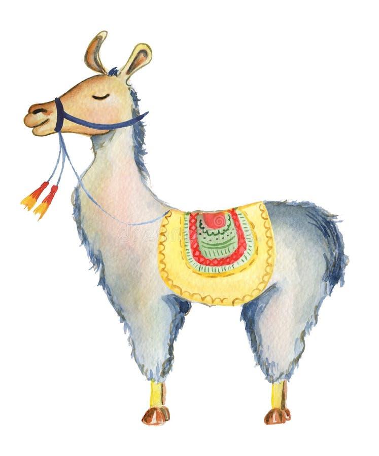 Śliczna lamy postać z kreskówki akwareli ilustracja, Alpagowy zwierzę, ręka rysujący styl Odosobniony biały tło ilustracja wektor