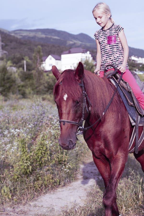 Śliczna młoda dziewczyna jedzie brązu konia na wiejskiej drodze w polu Dziecka lata sportów obóz Dziecko cicho zdjęcie stock
