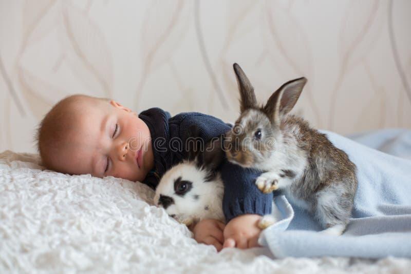 Śliczna mała chłopiec, śpi z zwierzę domowe królikami fotografia royalty free