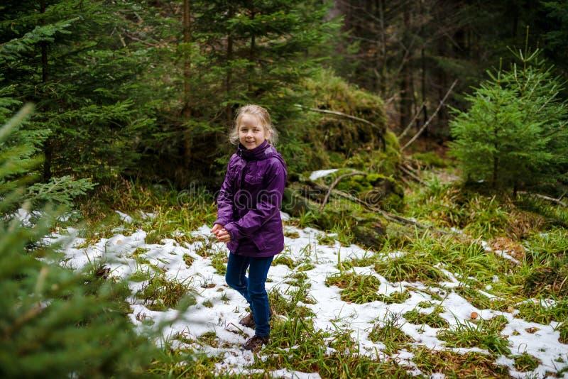 Śliczna mała dziewczynka śmia się, jesienny las z pierwszy śniegiem, Francja fotografia royalty free