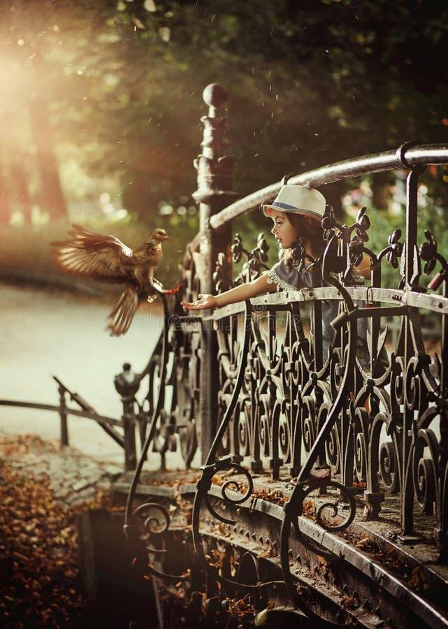 Śliczna mała dziewczynka karmi dzikiego ptaka w miasto parku fotografia royalty free