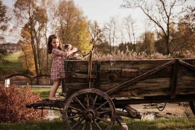 Śliczna mała dziewczynka na gospodarstwie rolnym obraz royalty free