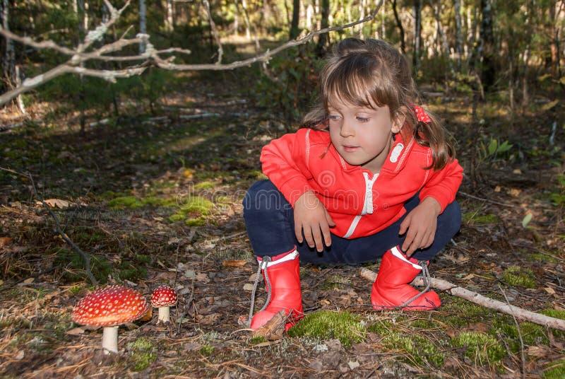Śliczna mała dziewczynka siedzi i spojrzenia przy toksycznym amanita muscaria one rozrastają się w jesień lesie fotografia stock
