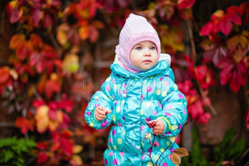 Śliczna mała dziewczynka w niebieskiej marynarce na tle czerwony vin obrazy stock