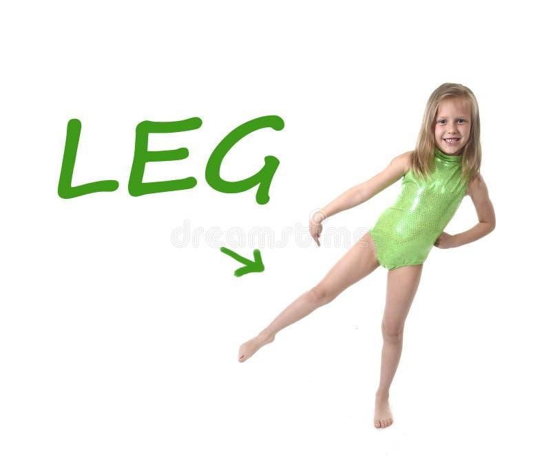 Śliczna mała dziewczynka wskazuje nogę w częściach ciała uczy się angielszczyzn słowa przy szkołą fotografia stock