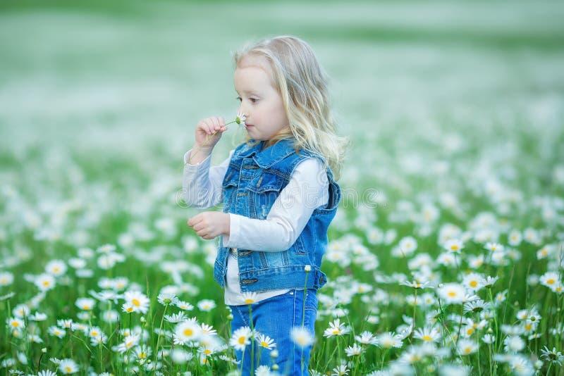 Śliczna mała uśmiechnięta dziewczynka w chamomile pola Małym blond dziecku z wiankiem na głowie w chamomiles jest ubranym cajgi i fotografia royalty free