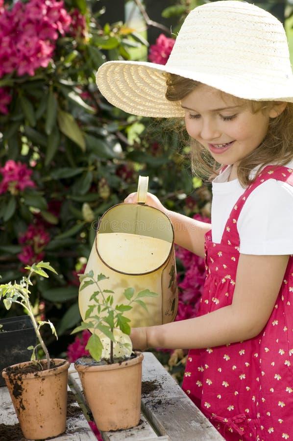 śliczna ogrodniczka zdjęcia stock