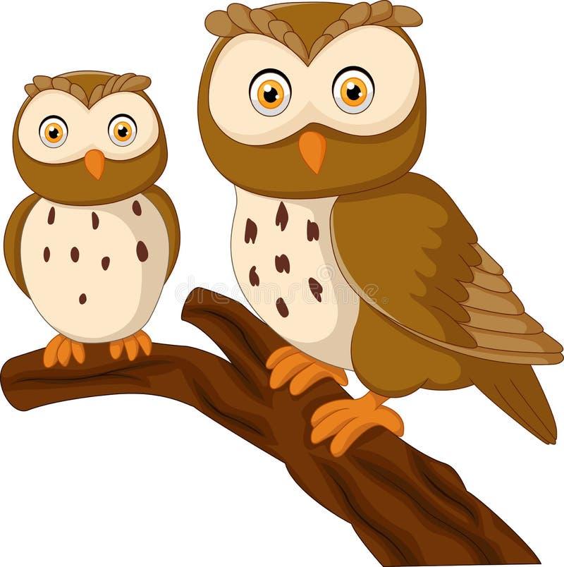 Śliczna sowy pary kreskówka ilustracja wektor