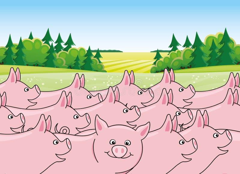Śliczne świnie w naturze ilustracja wektor