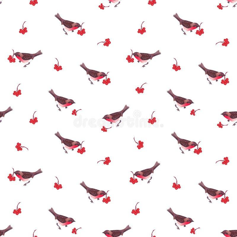Śliczni Bożenarodzeniowi gile i ashberry bezszwowy wektoru wzór ilustracja wektor