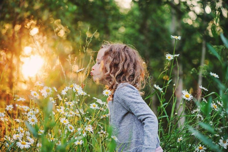 Śliczni kędzierzawi dziecko dziewczyny odory kwitną na lata polu obrazy royalty free