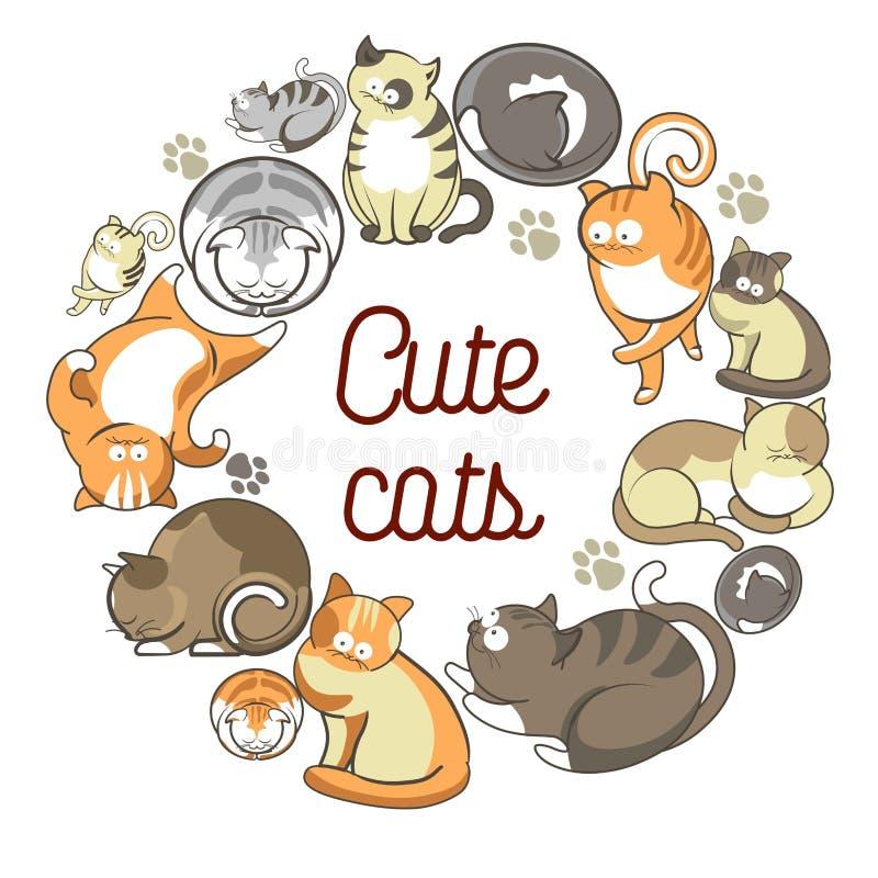 Śliczni koty z puszystym futerkiem który kłama w okręgu royalty ilustracja