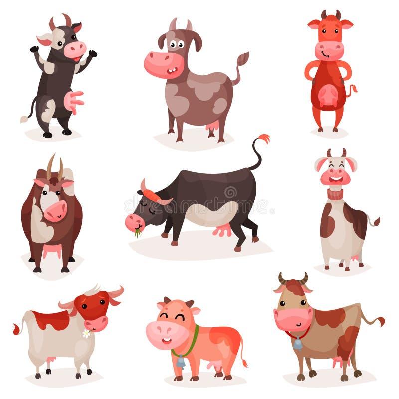 Śliczni krowa charaktery ustawiają, śmieszne krowy w różnych pozyci kreskówki wektoru ilustracjach royalty ilustracja